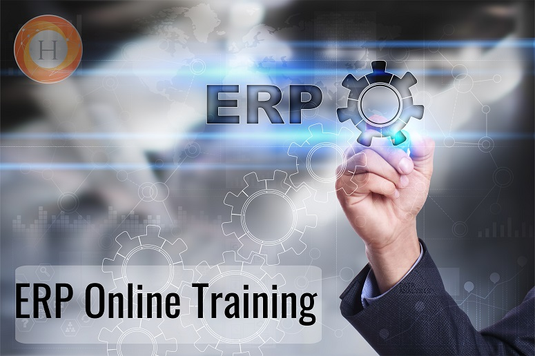 erp online training